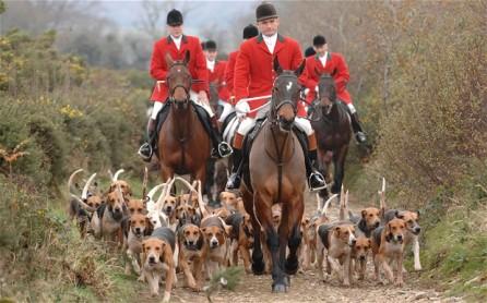 fox-hunting_2772078b